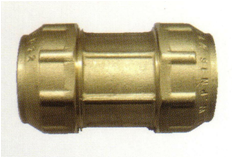 poli6001