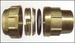 poli6011
