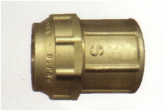 poli6021